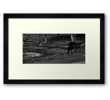 Watching the World Framed Print