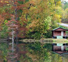Beavers Bend Fly Shop by Carolyn  Fletcher