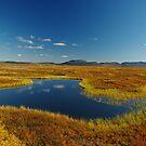 Mývatn landscape by lukasdf