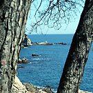 Costa Brava by garigots