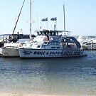 MV Spirit - Tamboi Queen Cruises by Joe Hupp