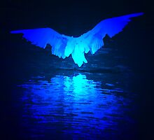 Night Wing by andonsea