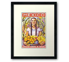 Mexico Travel Poster 2 Framed Print