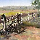 Knoop's Farm by Marsha Elliott