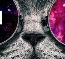 Phi Mu Galaxy Cat Sticker