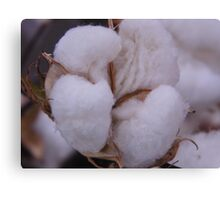 COTTON for the BOWL Canvas Print