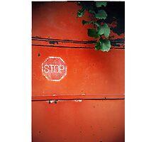 STOP Photographic Print