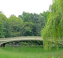 Bow Bridge by Susan Lotter