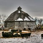 10 Sided Barn by Larry Trupp