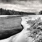 Frozen by Chintsala
