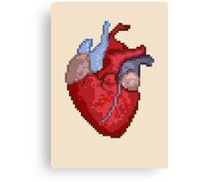 16-Bit Troubles for an 8-Bit Heart Canvas Print