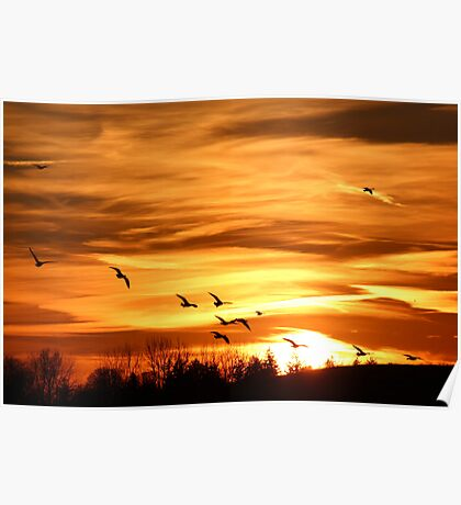 Sunset Flyers Poster
