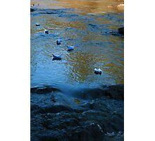 Paper Boats Photographic Print
