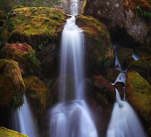 Watson Falls I · Revisited by Tula Top