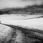 Road Home by Zach Pezzillo