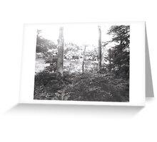 Lake Owego Over Trees Greeting Card