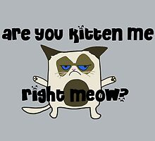 Are You Kitten Me Right Meow?  by Stacey Roman