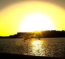 Sunset At The Port by Darren Speedie