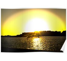Sunset At The Port Poster