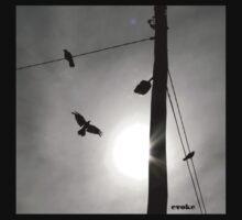 Flight by evoke by dwadepoupe