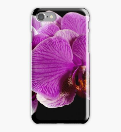 Orchid 2011 iPhone Case/Skin