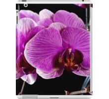 Orchid 2011 iPad Case/Skin