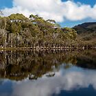 Melaleuca Inlet reflections by clickedbynic