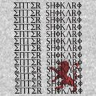 Enter Shikari by Nickhill De Silva