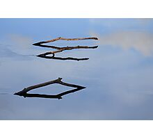 Three Sticks Photographic Print