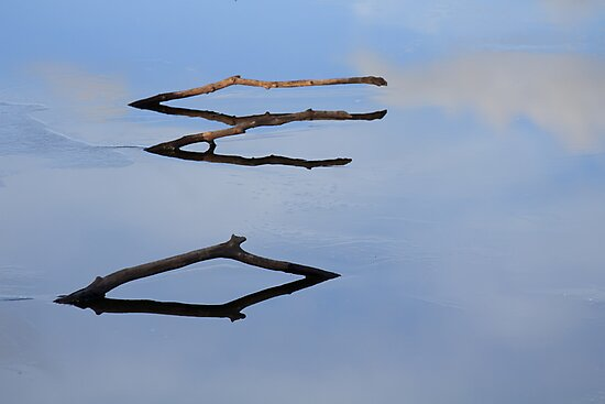 Three Sticks by Lynn Wiles