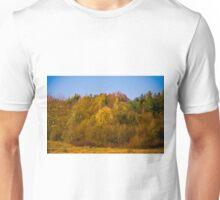Autumn colors 2011 Unisex T-Shirt