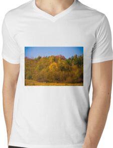 Autumn colors 2011 Mens V-Neck T-Shirt