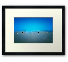The 7 Swans Framed Print