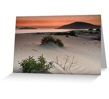 Hawks Nest Dawn Greeting Card