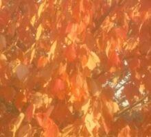 Fiery Orange Fall Sticker