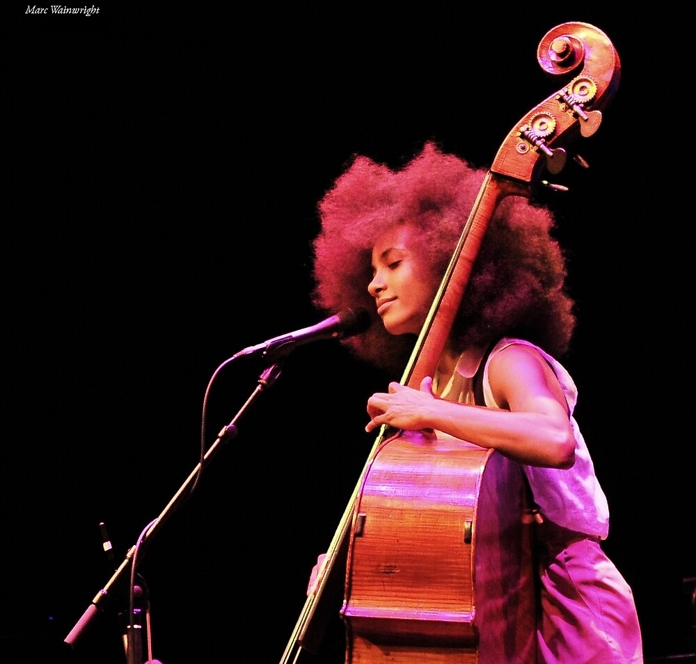 Esperanza Spalding in Concert at the Barbican 2011 by MarcW