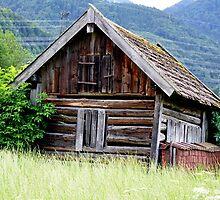 Beautiful Little Barn by Daidalos