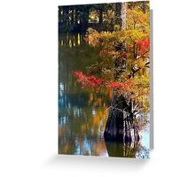 Autumn Cypress  Greeting Card