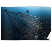 Shopping trolley, Rotherhithe, 30 seconds Poster