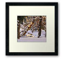 Colorado Christmas 2011 Framed Print