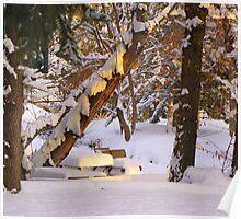 Colorado Christmas 2011 Poster
