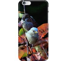 Contrasting cousins iPhone Case/Skin