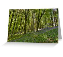 Dorset Spring,  Greeting Card