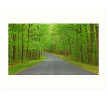 Winding Road to Somewhere Art Print
