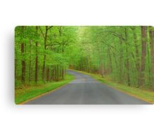 Winding Road to Somewhere Metal Print