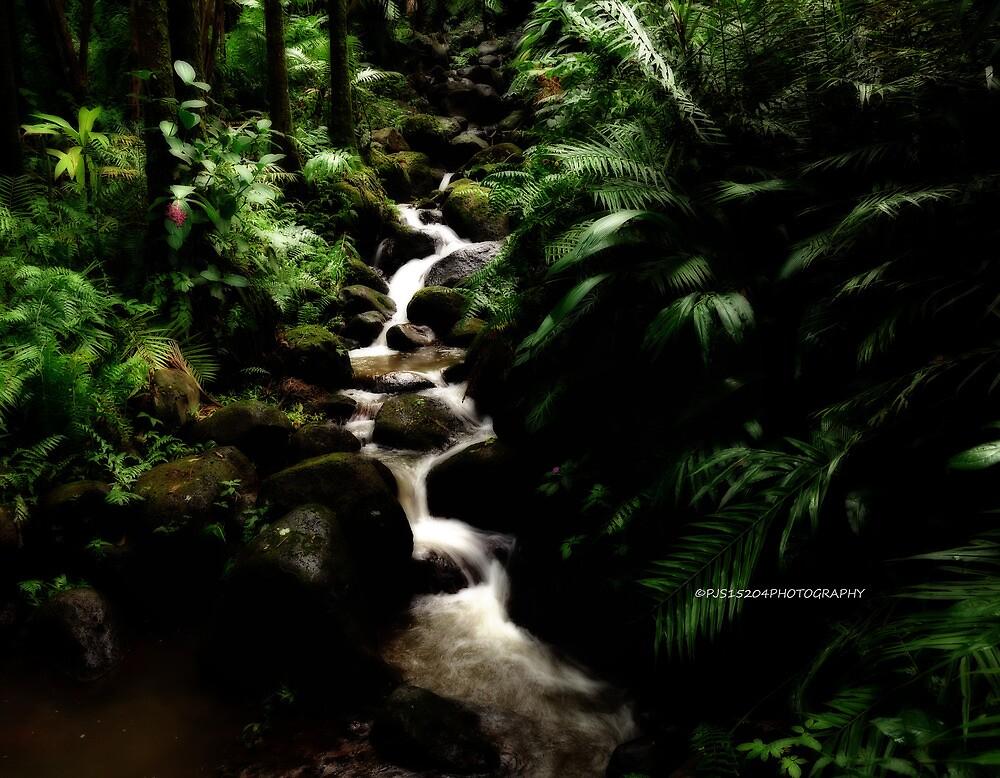 hawaiian botanical gardens V by PJS15204