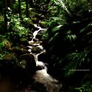 hawaiian botanical gardens V by PJS15204