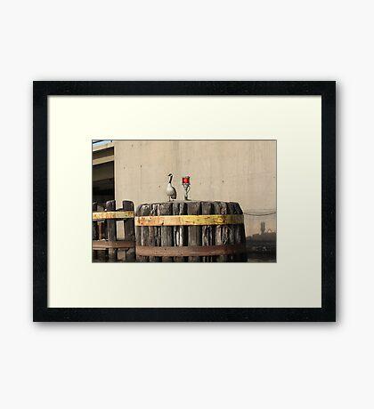 Goose on Barge Bumper Framed Print