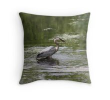 Great Blue Heron with Creek Chub Throw Pillow
