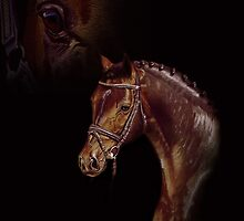 Horse - colored Pencil by Monika Juengling